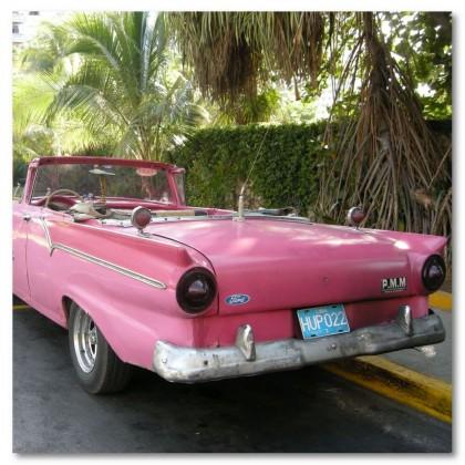 Αφίσα (αυτοκίνητο, ford, ροζ, δέντρο)